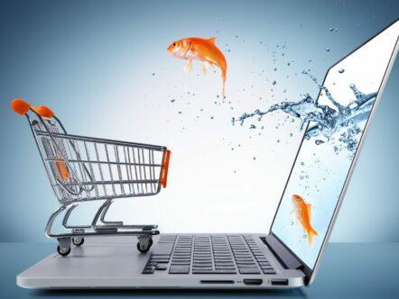 como-administrar-um-negocio-digital-Torne-o-seu-e-commerce-bem-sucedido