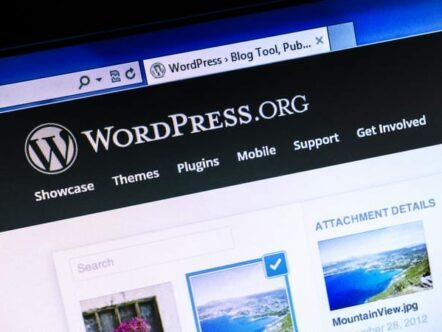 wordpress-seo-e-content-marketing