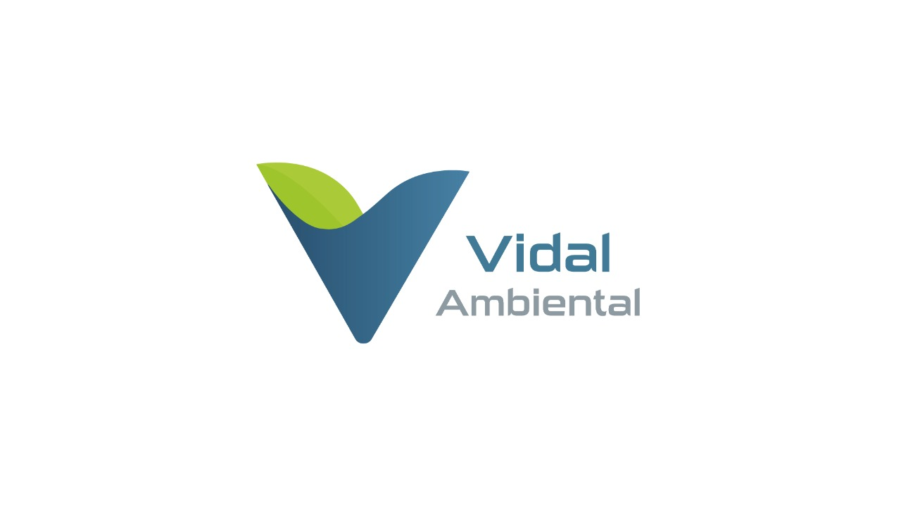 vidal8